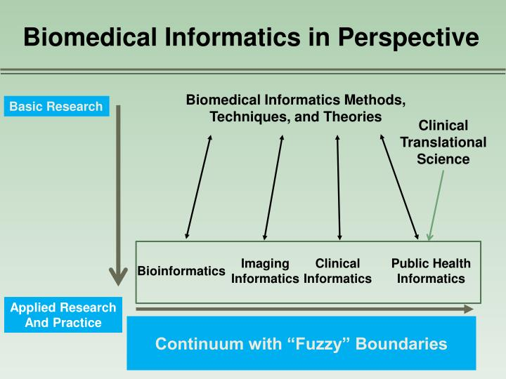 Biomedical Informatics in Perspective