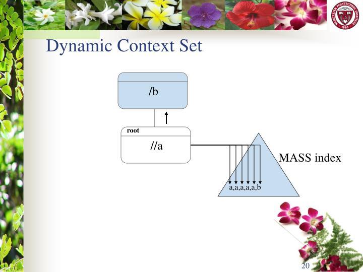 Dynamic Context Set