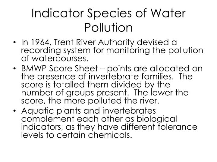 Indicator Species of Water Pollution