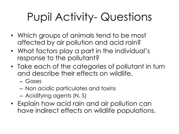 Pupil Activity- Questions