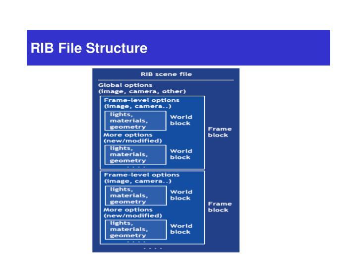RIB File Structure
