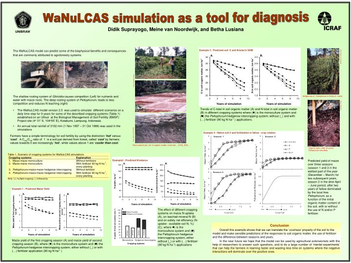 WaNuLCAS simulation as a tool for diagnosis