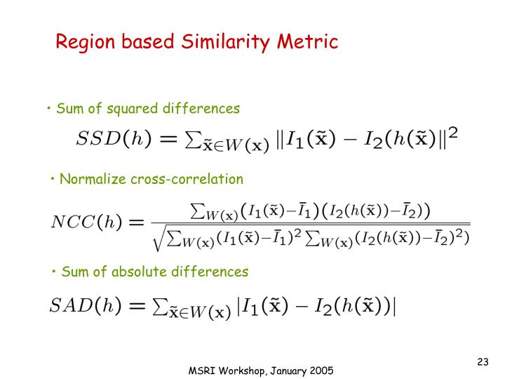 Region based Similarity Metric