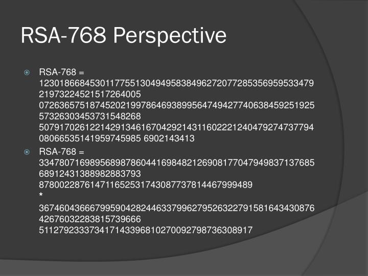RSA-768 Perspective