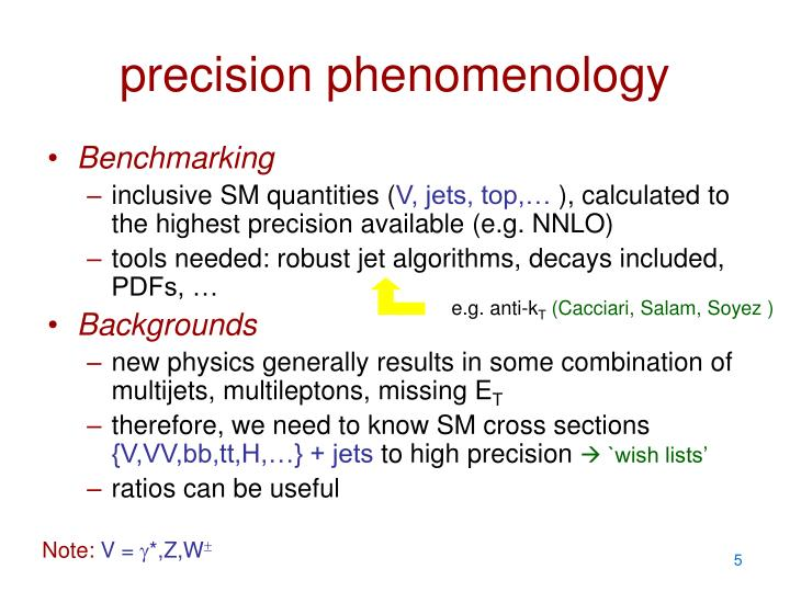precision phenomenology
