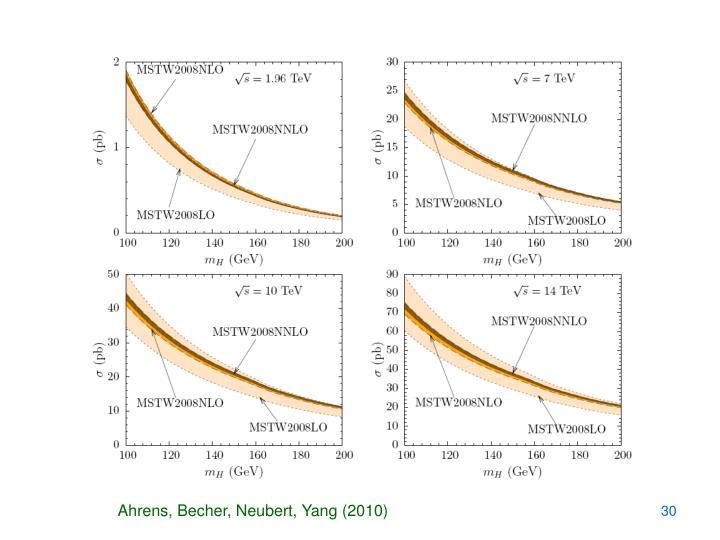 Ahrens, Becher, Neubert, Yang (2010)