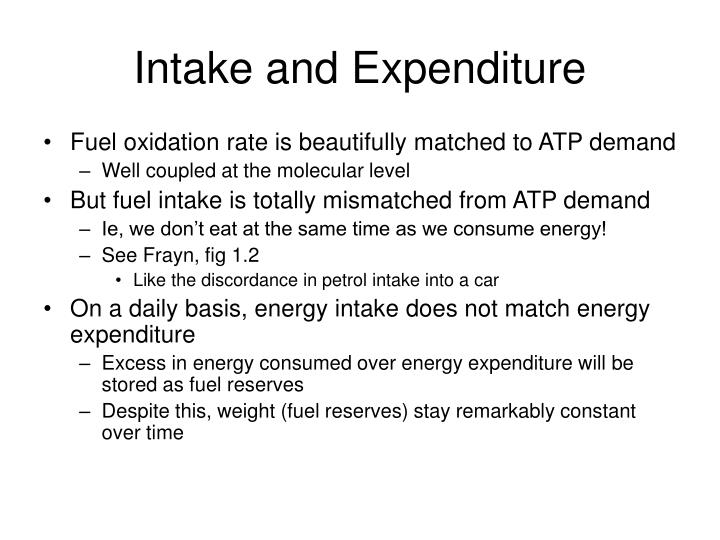Intake and expenditure