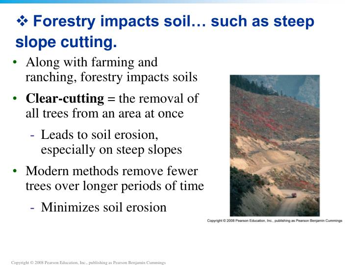 Forestry impacts soil… such as steep slope cutting.