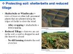 protecting soil shelterbelts and reduced tillage