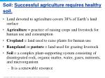 soil successful agriculture requires healthy soil