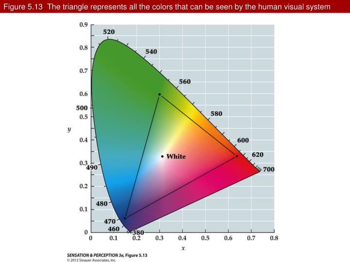 Figure 5.13  The triangle represents all the colors that can be seen by the human visual system
