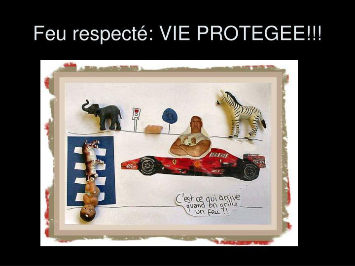 Feu respecté: VIE PROTEGEE!!!