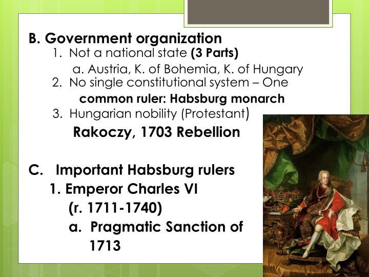 B. Government organization