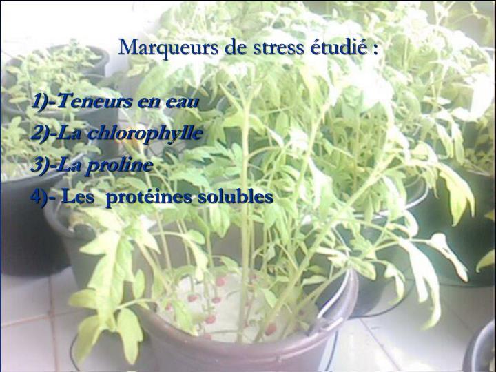 Marqueurs de stress étudié: