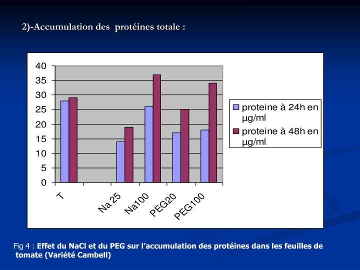 2)-Accumulation des  protéines totale: