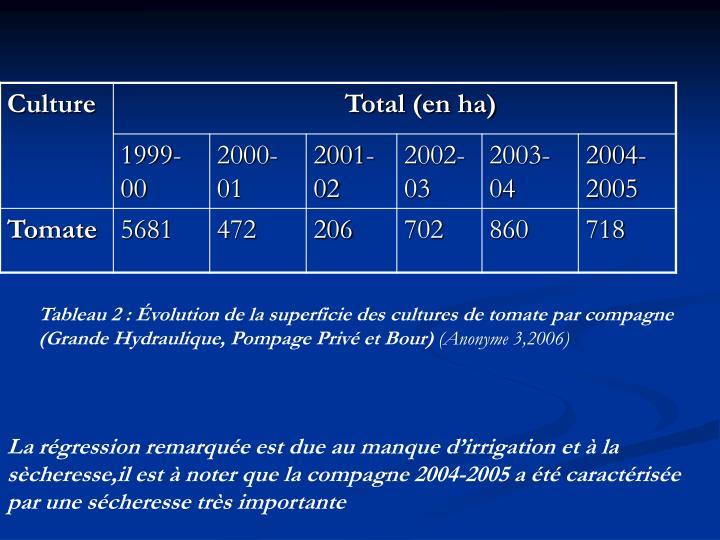 Tableau 2: Évolution de la superficie des cultures de tomate par compagne