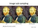 image sub sampling1
