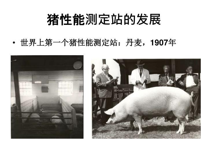 猪性能测定站的发展