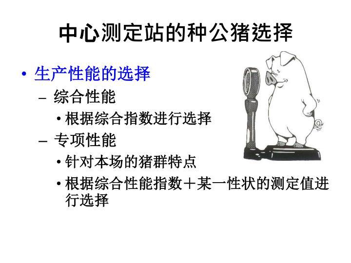 中心测定站的种公猪选择