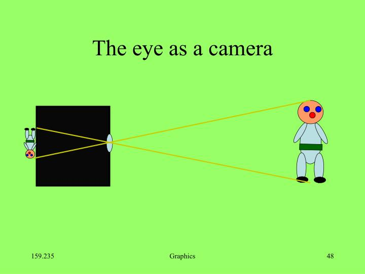The eye as a camera