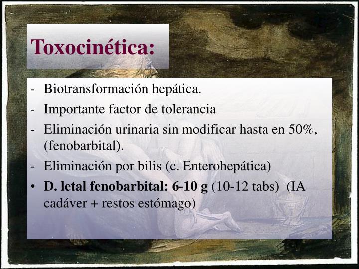 Toxocinética: