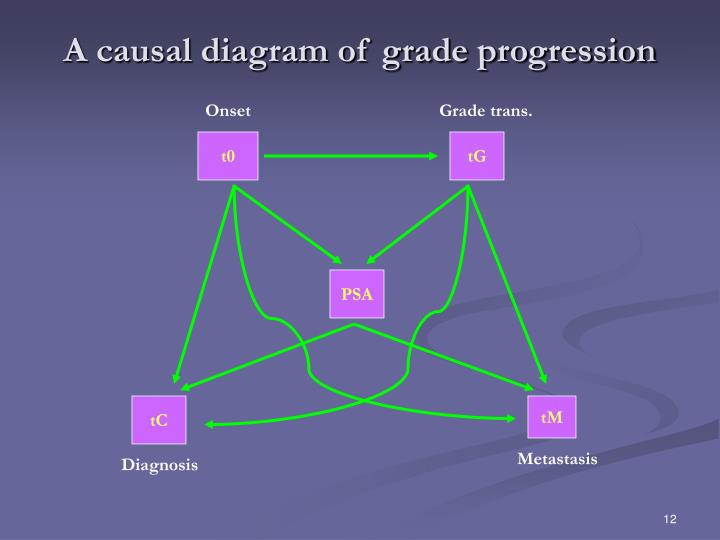 A causal diagram of grade progression
