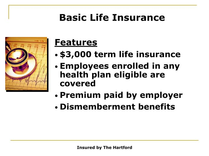 Basic Life Insurance