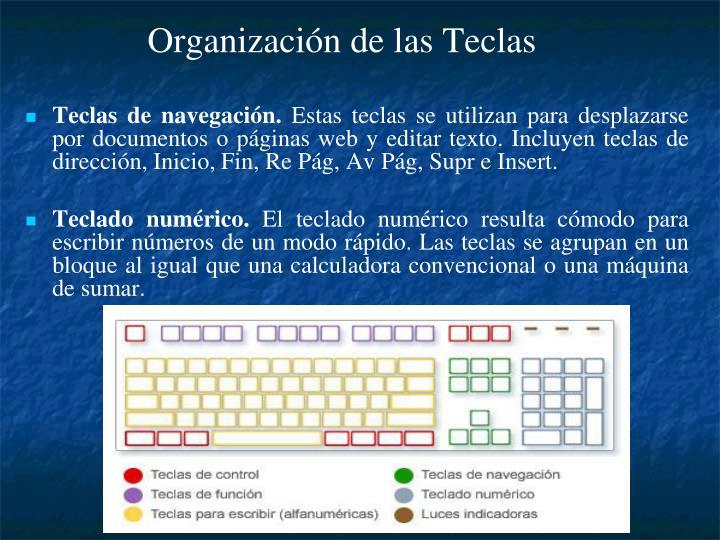 Organización de las Teclas