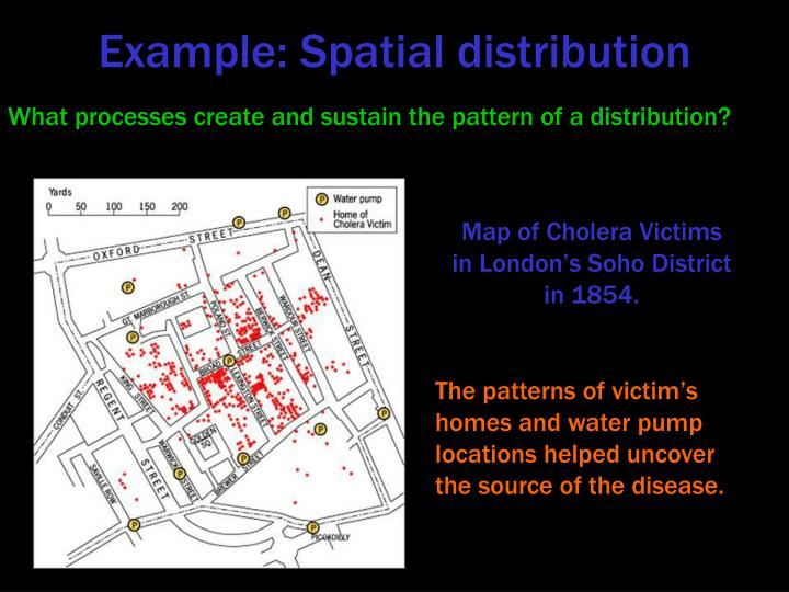 Example: Spatial distribution