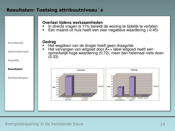 Resultaten: Toetsing attribuutniveau`s