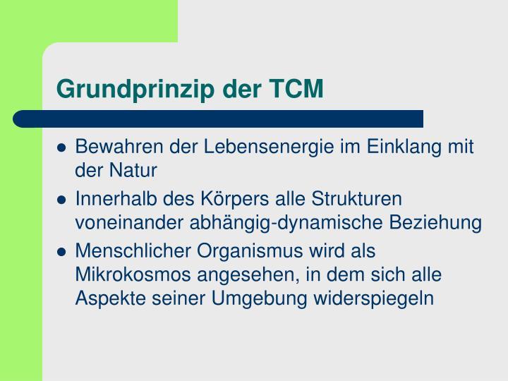 Grundprinzip der TCM