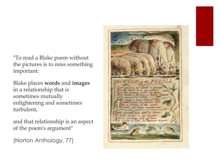 """To read a Blake poem without the pictures is to miss something important:"