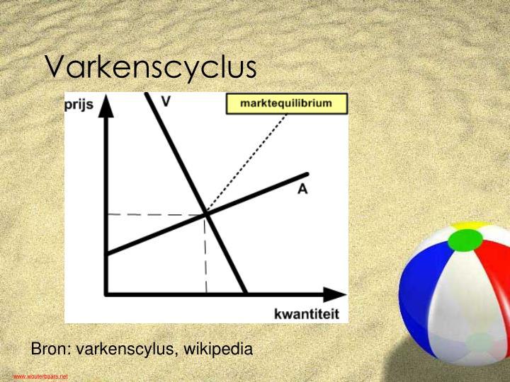 Varkenscyclus