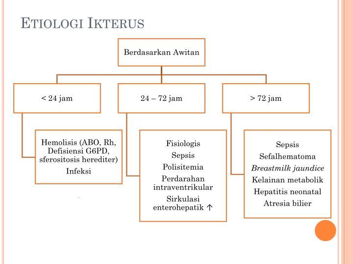 Etiologi Ikterus
