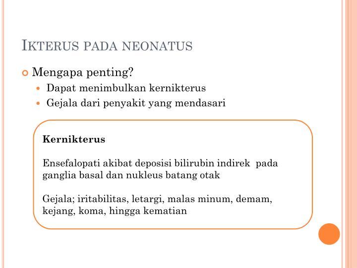 Ikterus pada neonatus