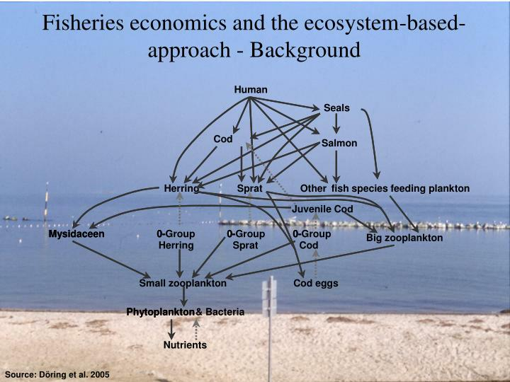 Fisheries economics and the ecosystem-based-approach - Background