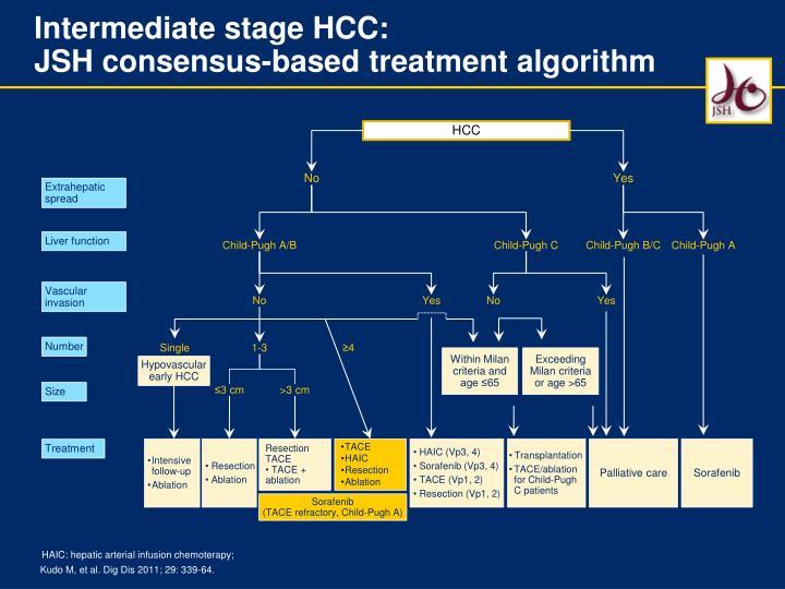 Intermediate stage HCC:
