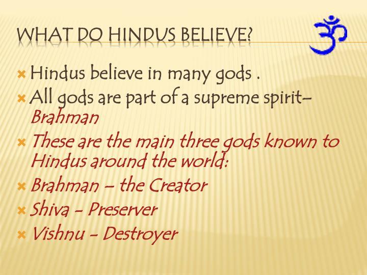 Hindus believe in many gods .