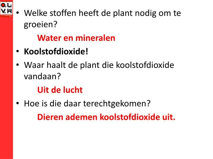 Welke stoffen heeft de plant nodig om te groeien?