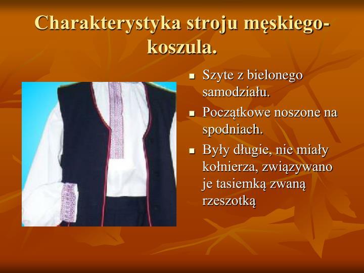 Charakterystyka stroju męskiego-