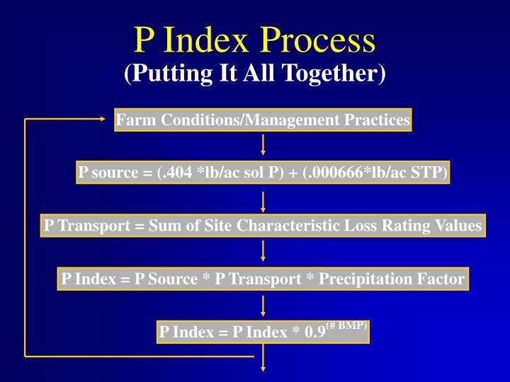 P Index Process