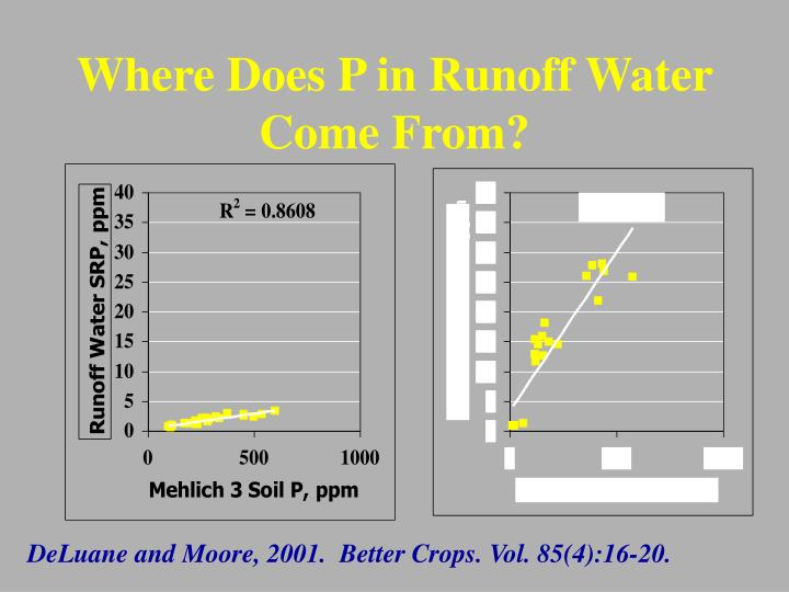 Where Does P in Runoff Water Come From?