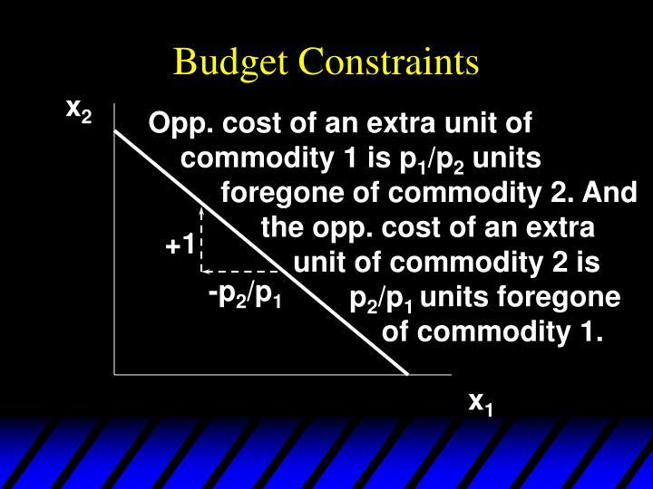 Budget Constraints