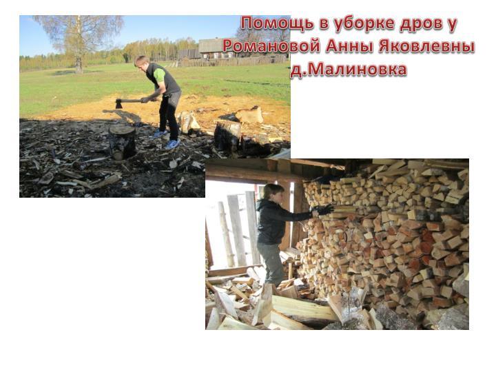 Помощь в уборке дров у Романовой Анны Яковлевны