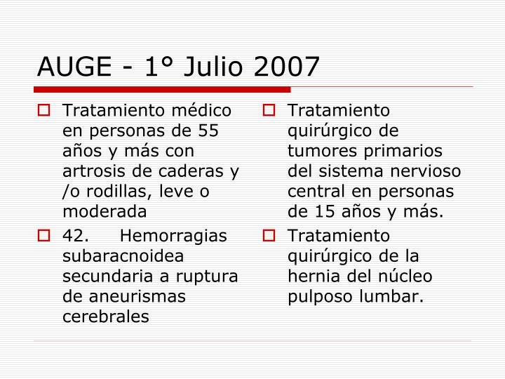 AUGE - 1° Julio 2007