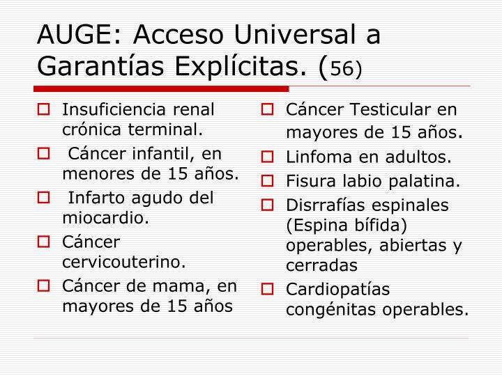 AUGE: Acceso Universal a Garantías Explícitas. (
