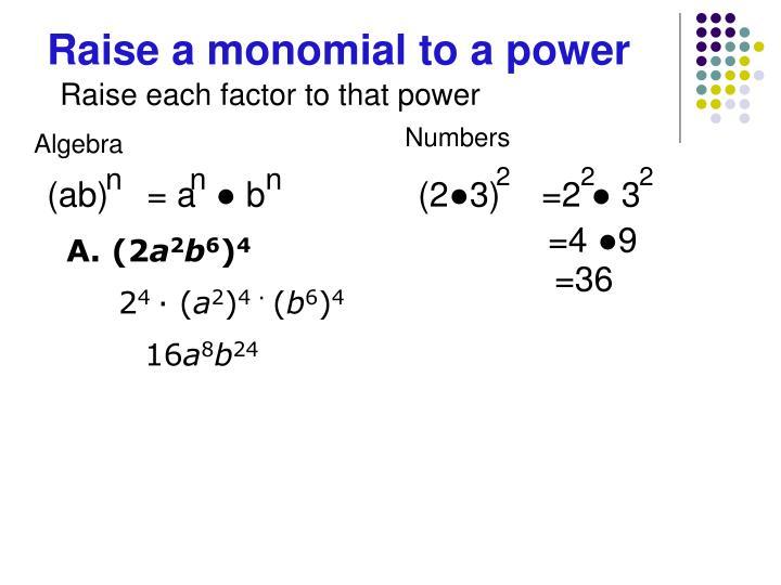 Raise a monomial to a power