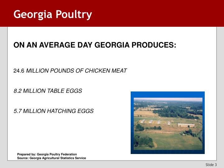 Georgia Poultry