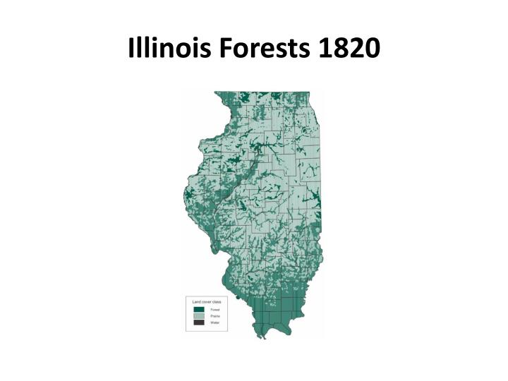 Illinois forests 1820