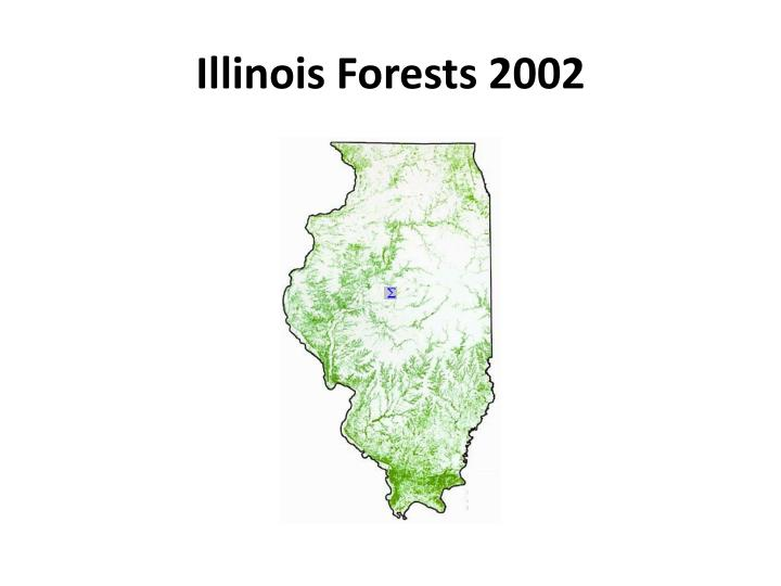 Illinois forests 2002